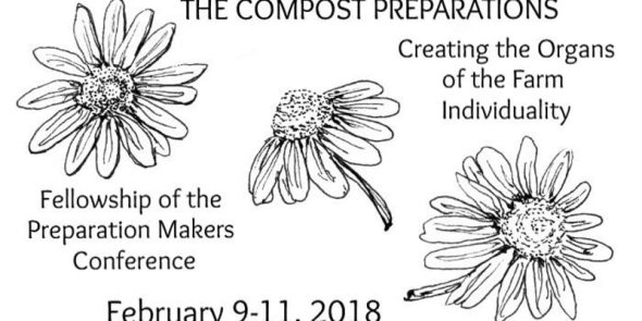 compost preps 02092018